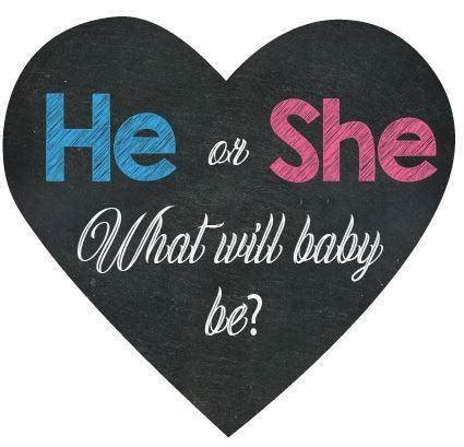 He or She Gender Reveal Box Sign - BumpReveal