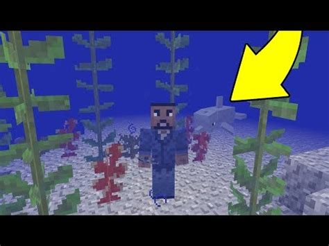 Minecraft: Remaking BUBBLE COLUMNS from the UPDATE AQUATIC