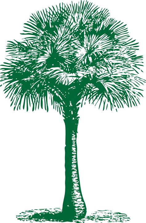Tropical plant-palm tree outline vector | Free PSD,Vector